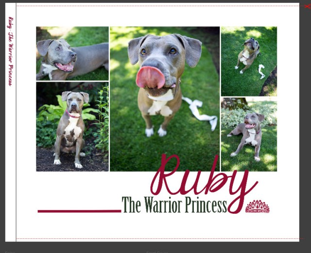 RUBY cover