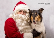 Santa and Collie